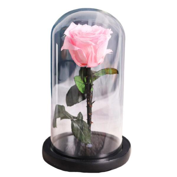 Fleur éternelle rose