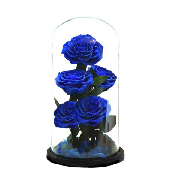 Fleurs éternelles bleues