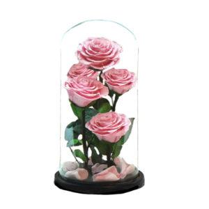 fleurs éternelles roses