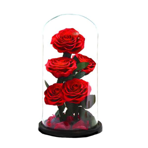 fleurs éternelles rouges