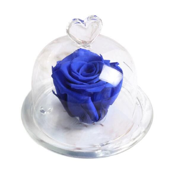 Mini Rose Éternelle Bleu
