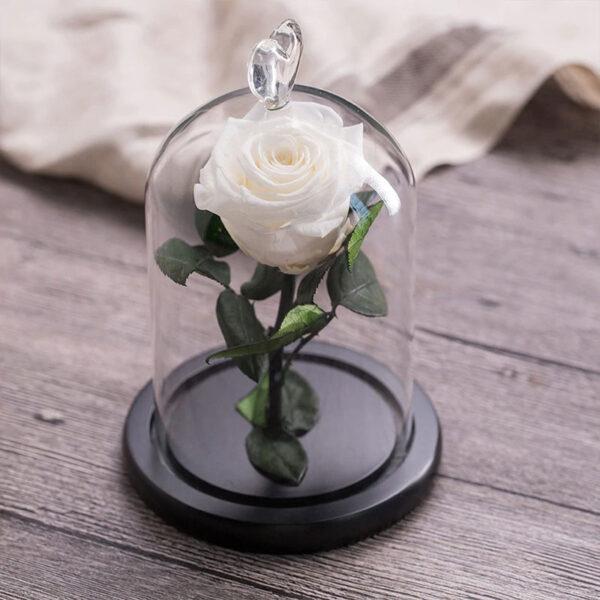 Petite Rose Artificielle Blanche Sous Cloche
