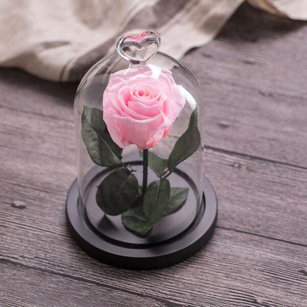 Rose Artificielle Rose Poudre Sous cloche