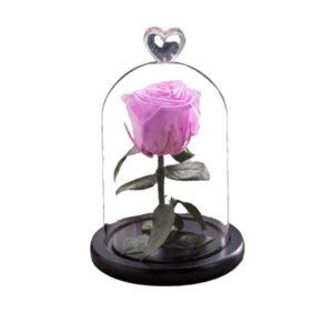 Rose artificielle rose sous cloche