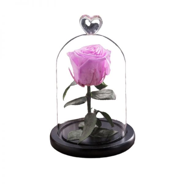 Rose artificielle rose sous cloche