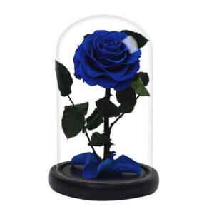 Rose Bleu Éternelle