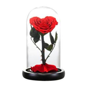 Rose coeur éternelle rouge