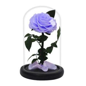 Rose éternelle avec vase