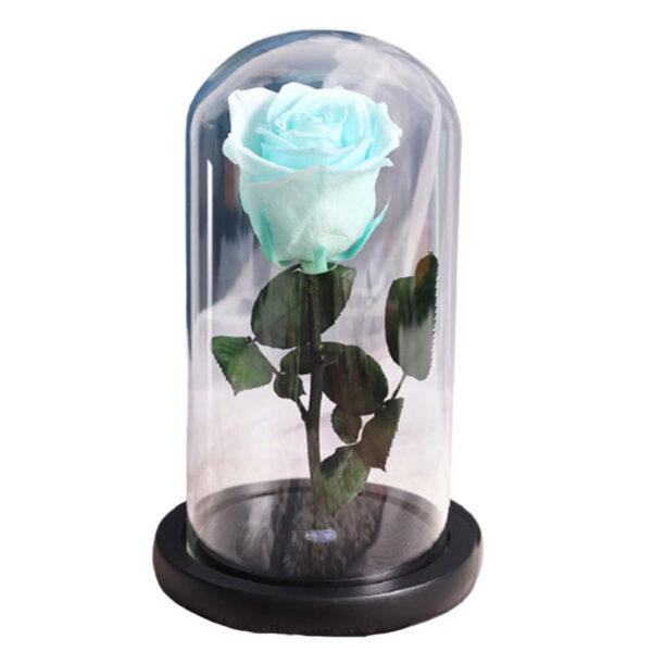 rose éternelle bleu ciel