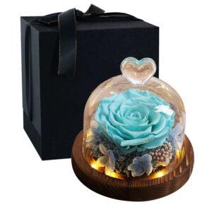 Rose éternelle sous cloche lumineuse bleue