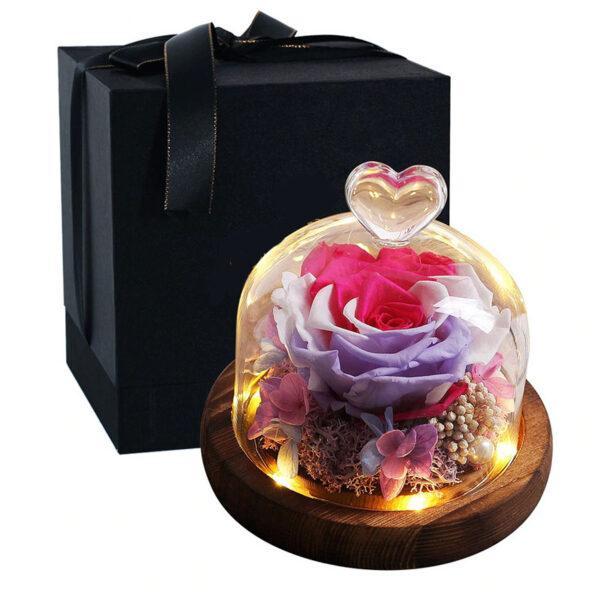 Rose éternelle sous cloche lumineuse multicolore