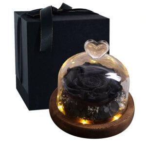 Rose éternelle sous cloche lumineuse noire