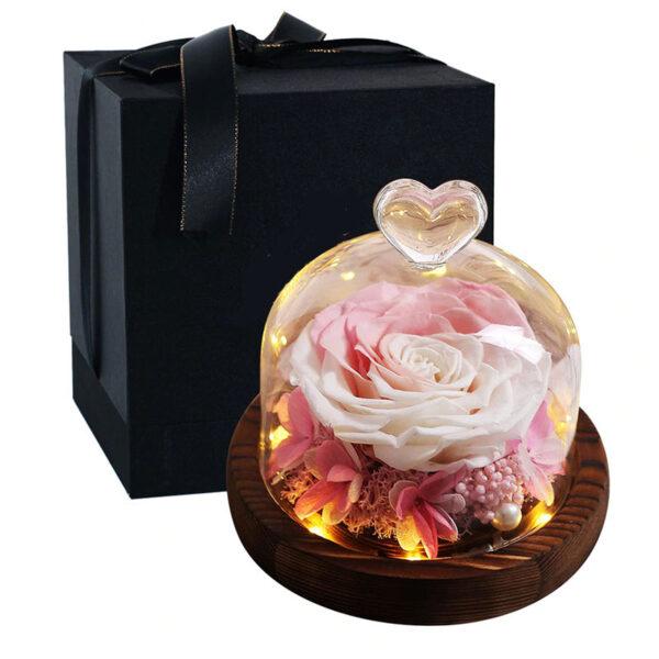 Rose éternelle sous cloche lumineuse rose blanche
