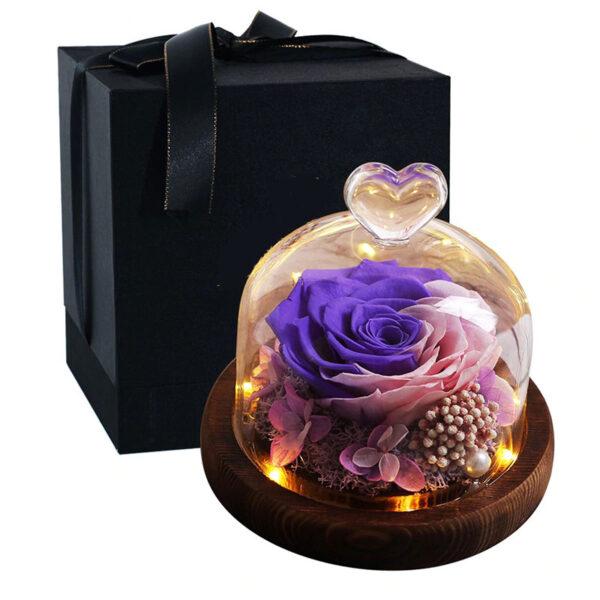 Rose éternelle sous cloche lumineuse rose violette