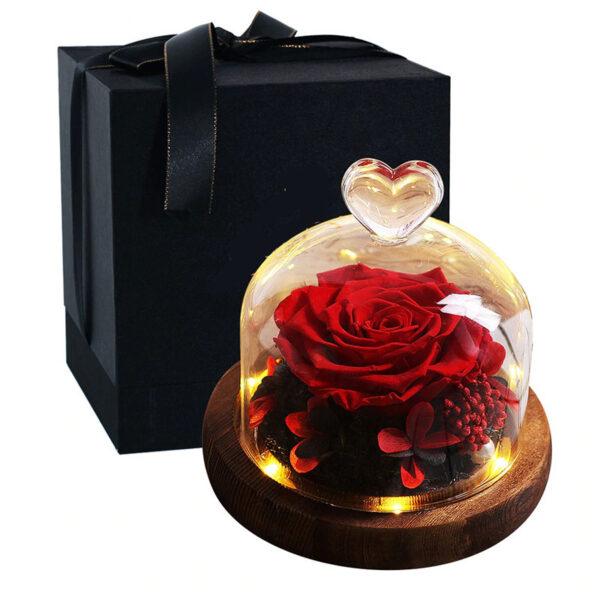 Rose éternelle sous cloche lumineuse rouge