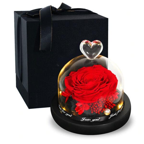 Rose éternelle sous cloche lumineuse rouge vif