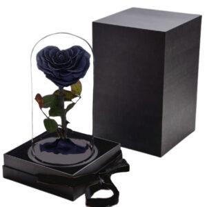Rose Noir éternelle avec boite sous cloche