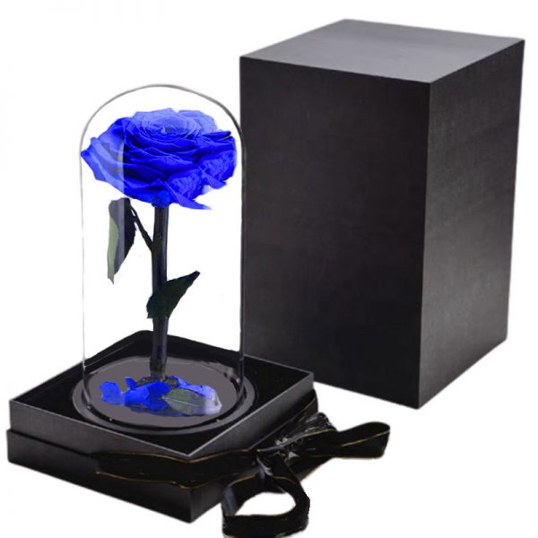 Rose Stabilisée bleu avec boite