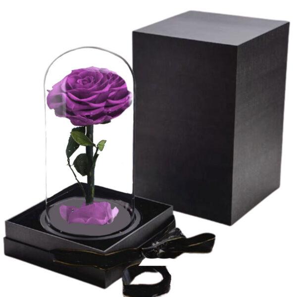 Rose Stabilisée Violette avec Boite