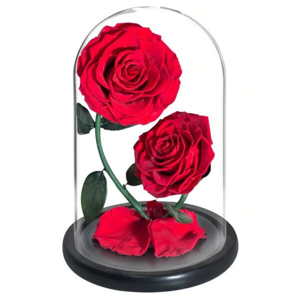 Roses Rouges Artificielles Sous Cloche