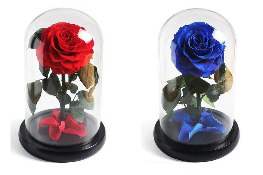 8 raisons pour offrir une rose stabilisée dit rose éternelle