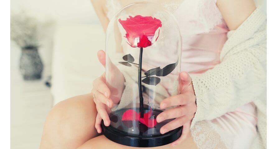 Qu'est-ce qu'une rose éternelle