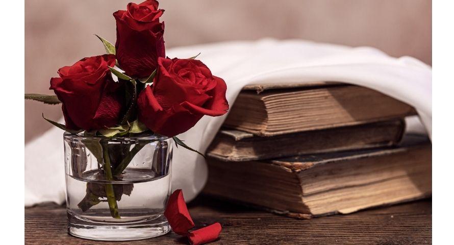 Rose stabilisée à offrir