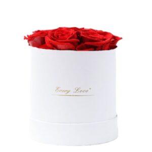 Boite Fleur Éternelle - Boite rose éternelle rouge