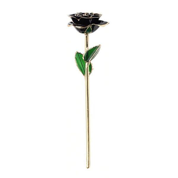 Rose 24k Noir - Rose éternelle or