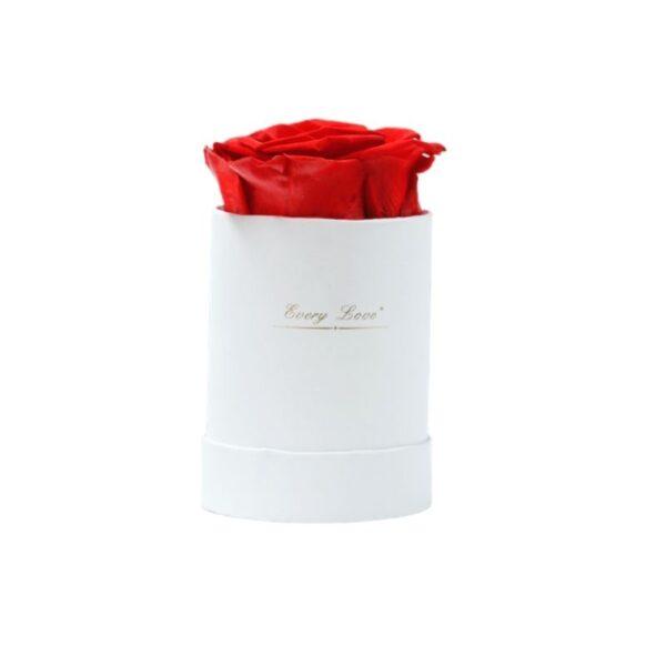 Rose éternelle avec boite - boite rose éternelle rouge