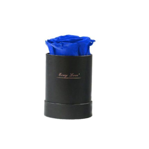 Rose éternelle dans une boite - Boite rose éternelle bleue