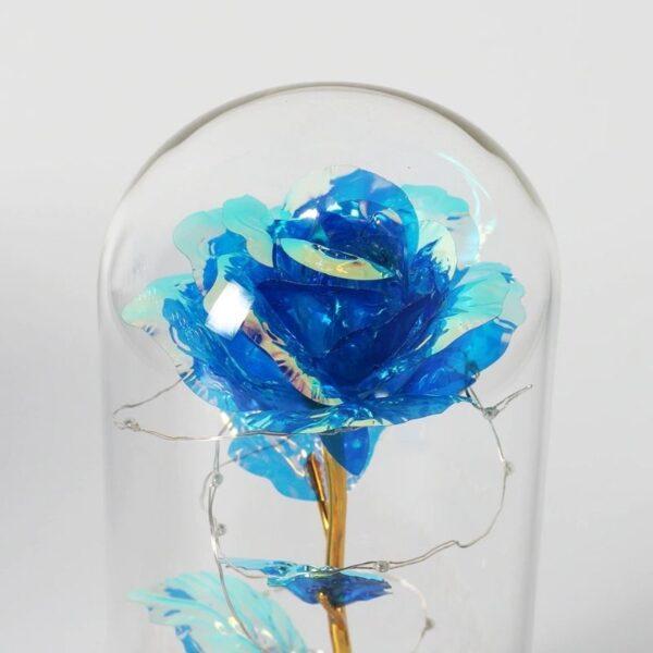 Rose Or Sous Cloche Bleu - Rose éternelle or