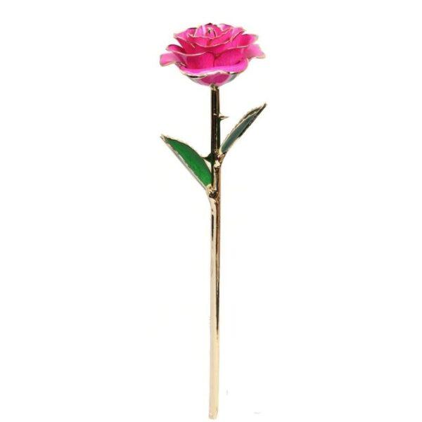 Rose plaqué or rose pourpre - Rose éternelle or